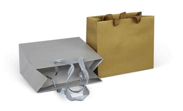 晴日小舖 Silver 首飾 包裝袋 禮品袋 手提袋 纸袋 橫版 [ GGB 020 ]
