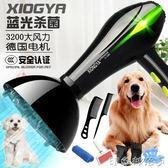 寵物吹風機大功率狗狗專用吹毛神器金毛泰迪貓咪小型大型犬吹水機 全館免運
