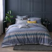 100%純棉 / 雙人 / 兩用被床包組-【栗色庭園】