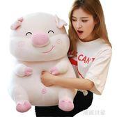 可愛豬毛絨玩具抱枕暖手公仔大布娃娃可插手玩偶超萌女孩睡覺懶人igo『潮流世家』