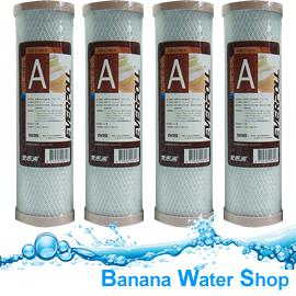 【Banana Water Shop】 EVERPOLL 愛惠浦 CTO 活性碳濾心 公司貨【 4支 】 EVB-C100A