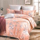 R.Q.POLO【溫柔夢鄉】精梳棉-雙人標準床包兩用被四件組(5X6.2尺)