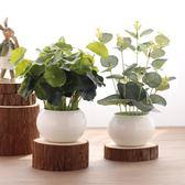 仿真綠植小盆栽荷葉銅錢草仿真假花塑料花家居隔板裝飾辦公桌擺件  igo 卡布奇諾