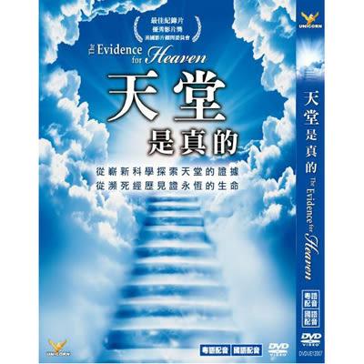 天堂是真的 DVD