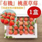 竹青亭農場-特殊水蜜桃風味•日本品種桃薰『有機』草莓 20入/250g/盒(免運宅配)