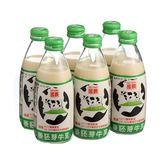 國農麥胚芽調味牛乳240mlx6【愛買】