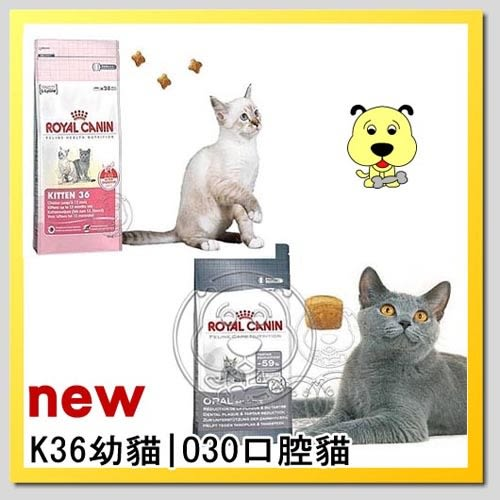 【ZOO寵物樂園】法國皇家K36幼貓4kg|O30口腔貓飼料3.5kg
