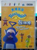 挖寶二手片-B15-068-正版DVD-動畫【天線寶寶:在哪裡】-國英語發音 幼兒教育 BBC