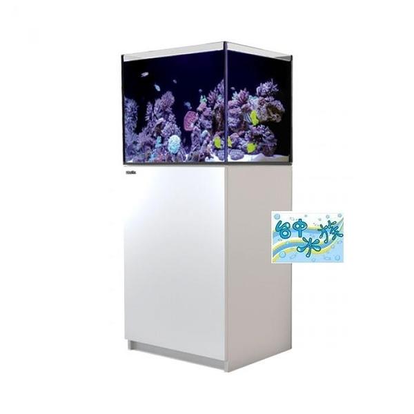 {台中水族}以色列原裝Red Sea -REEFER- 170 珊瑚礁岩水族套缸(白) 特價  60*50*50cm 超白玻璃10mm