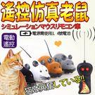 【 培菓平價寵物網 】dyy》遙控仿真老鼠(顏色隨機出貨)