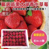 233元起【果之蔬-全省免運】嚴選苗栗大湖香水草莓X1盒 【單盒30-35顆/400克±10%/含盒重】