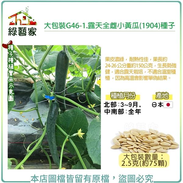 【綠藝家】大包裝G46-1.露天全雌小黃瓜(1904)種子2.5克(約75顆)