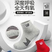 3雙wilson專業運動襪男春夏季薄款透氣中筒襪子籃球中幫運動襪棉
