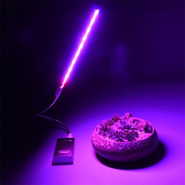 USB led多肉紅藍燈 室內仿太陽光補光燈 全光譜 花卉 植物生長燈  極有家 ATF