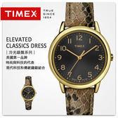 TIMEX天美時時尚蛇紋皮革錶【NE1211】原廠公司貨