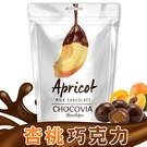 CHOCOVIA杏桃巧克力120g 日華好物 賞味期限至2020年5月5日