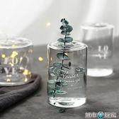 花瓶 態生活 ins北歐簡約印花小孔玻璃花器透明水培玻璃花瓶干花香薰瓶 城市玩家