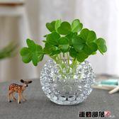 花瓶玻璃水培瓶容器銅錢草植物花盆綠蘿花瓶透明插花 運動部落