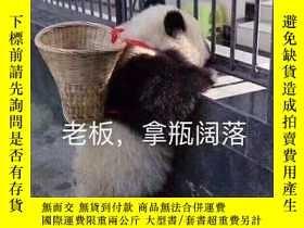 二手書博民逛書店ARTIST罕見2015年 11月 NO.486 原版期刊Y23
