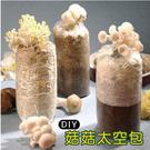 栽種樂 菇菇 DIY 8包(太空包)+8...