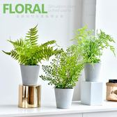現代家居室內辦公室植物盆景仿真綠植盆栽北歐簡約裝飾擺件  igo 居家物語