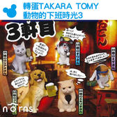 Norns【轉蛋TAKARA TOMY動物的下班時光3】日本扭蛋 喝酒 狗狗 貓咪 公仔 玩具 黃金獵犬