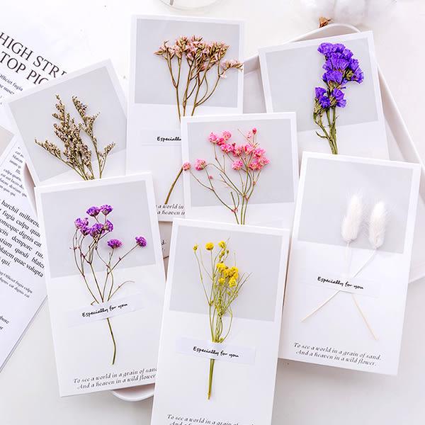 【BlueCat】小清新白底長條乾燥花卡片
