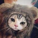 貓咪頭套搞笑搞怪舞獅服假發泰迪狗狗帽子獅子寵物『洛小仙女鞋』