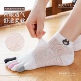 五指襪子女士可愛日系ins潮春夏季薄款短筒襪五趾女船襪分趾棉襪 滿天星