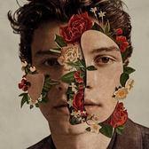 尚恩曼德斯 同名專輯 CD 豪華限定版 Shawn Mendes 免運 (購潮8)