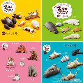 扭蛋 治癒系 日版 扭蛋 暴睡 休眠動物園 睡覺動物模型 博物小館  二度3C