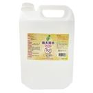 南太 次氯酸水 4000ml 擦拭消毒潔 除菌液 / 桶