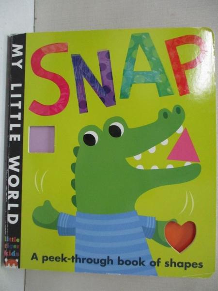 【書寶二手書T5/少年童書_H5G】Snap_Jonathan Litton