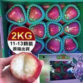 【WANG-全省免運】頂級林邊黑珍珠蓮霧禮盒X1箱(11-13顆/盒 每盒約2kg±10%含盒重)