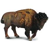 【永曄】collectA 柯雷塔A-英國高擬真動物模型-陸地動物系列-美洲野牛
