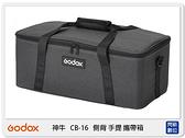 GODOX 神牛 CB-16 側背 手提 攜帶箱 配件收納 適VL系列攝影燈 CB16 (公司貨)