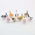 三代自愈系可愛貓咪公仔 溫暖系列 日本貓咪 圓滾 憨實 貓咪 手辦韓版創意造景公仔