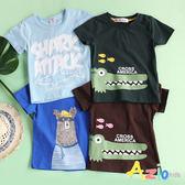 童裝 上衣 條紋棕熊/鯊魚字母/鱷魚印花舒適短袖棉T(共4款)