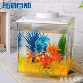 桌面魚缸 桌面迷你泰國斗魚缸小型觀賞魚缸生態造景缸 nm7531【歐爸生活館】