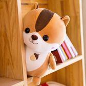 創意羽絨棉鬆鼠毛絨玩具定做兒童生日禮物公仔玩偶婚慶布娃娃igo  莉卡嚴選