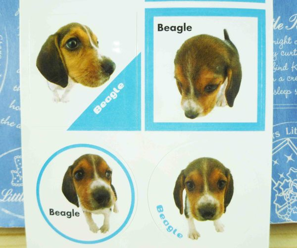 【震撼精品百貨】新大頭狗_The Dog~長貼紙-米格魯藍