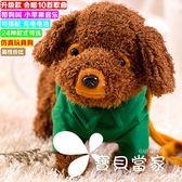兒童電動牽繩狗毛絨玩具狗走路小狗音樂機械遙控狗狗玩具電子寵物