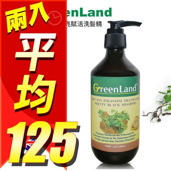 【兩件組】GreenLand 何首烏黑亮賦活洗髮精 300ml 【YES 美妝】