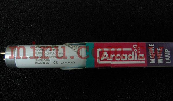 【西高地水族坊】英國阿卡迪亞Arcadia 海水長效鹵素燈管MARINE WHITE LAMP T8 FL (30w)