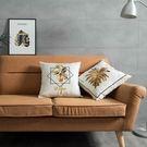 時尚簡約實用抱枕264  靠墊 沙發裝飾...