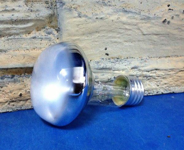 【西高地水族坊】ZOO MED(ZOOMED) 取暖燈(75W)
