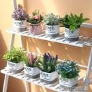 仿真盆栽北歐客廳仿真綠色植物綠植裝飾假花辦公桌小盆栽擺件創意家居 大宅女韓國館