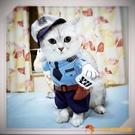 貓咪衣服寵物警察變身裝狗狗衣服搞笑娛樂寵物衣服【小獅子】