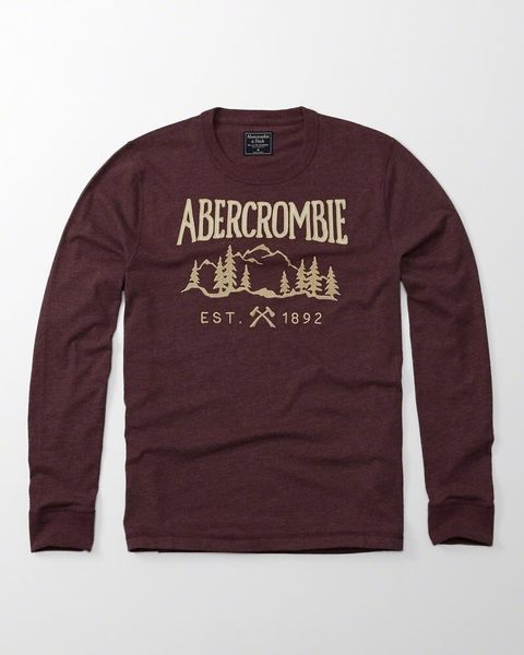AF A&F Abercrombie&Fitch 男 圖案 E.S.T 長TEE 棕色【美國麋鹿】