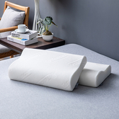 HOLA 天絲記憶曲線型對枕